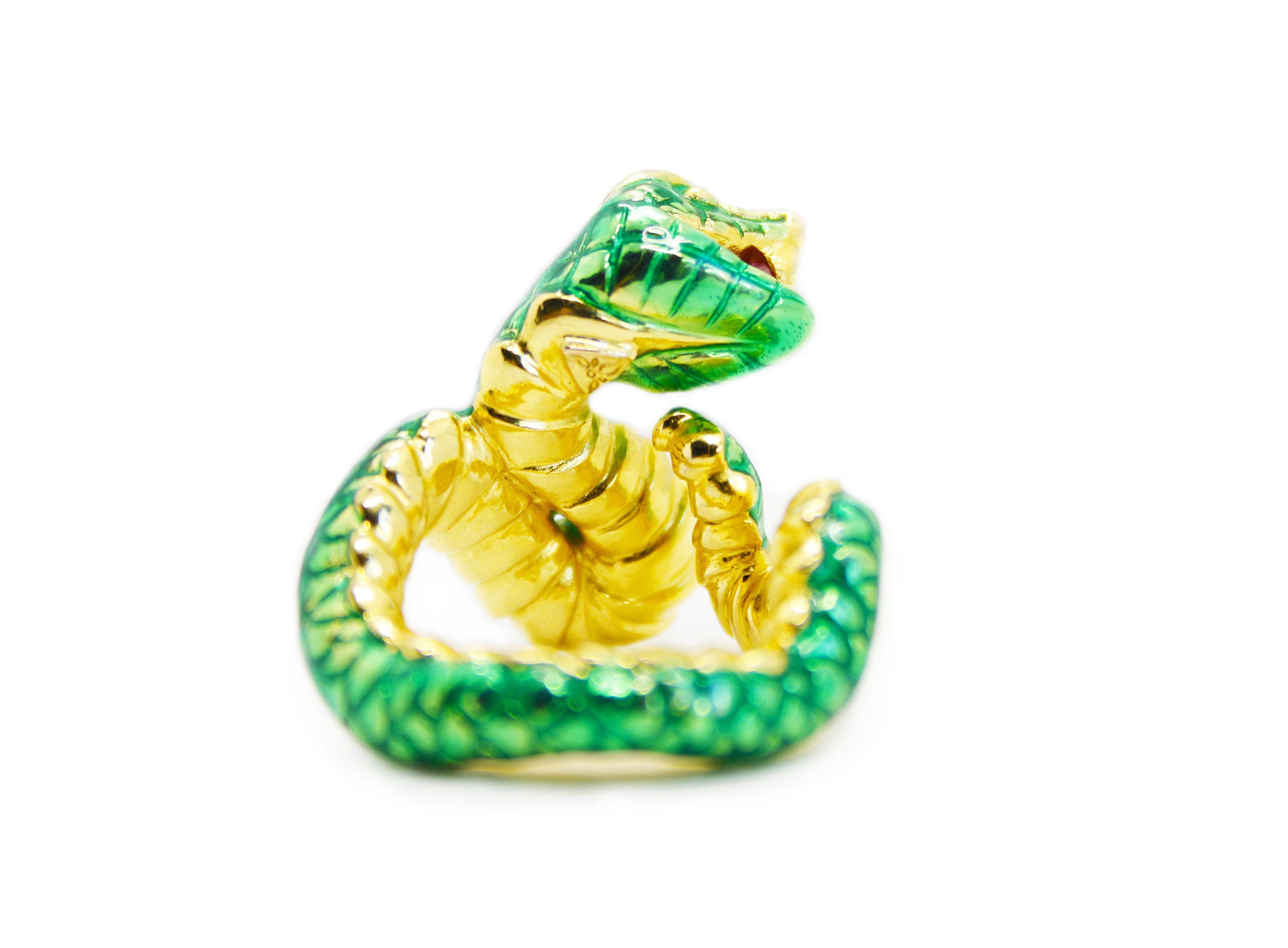 serpiente dentro